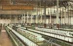 Spinning Room of Arkright Cotton Mills, Spartanburg, SC